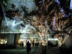 20071115_15_六本木